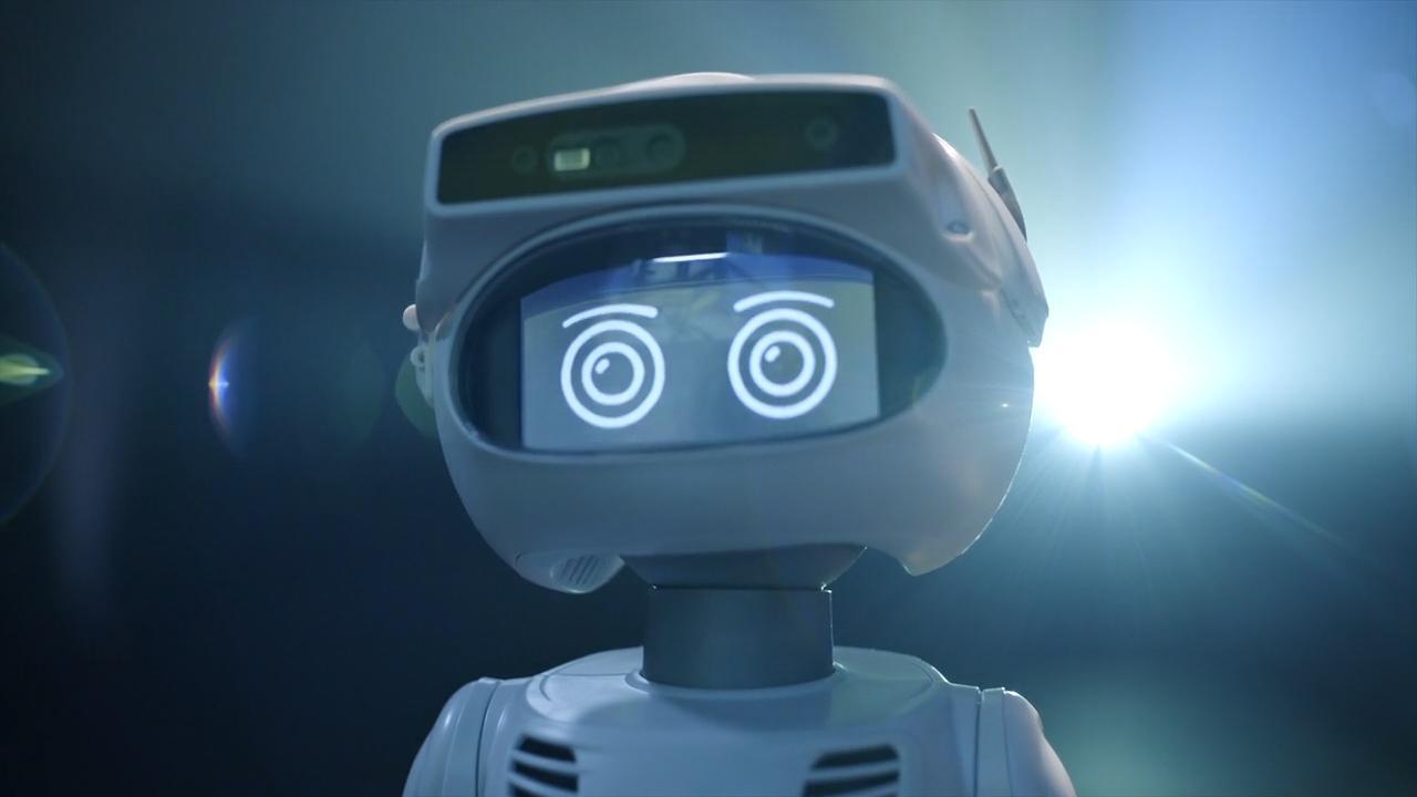 Misty II Personal Robot