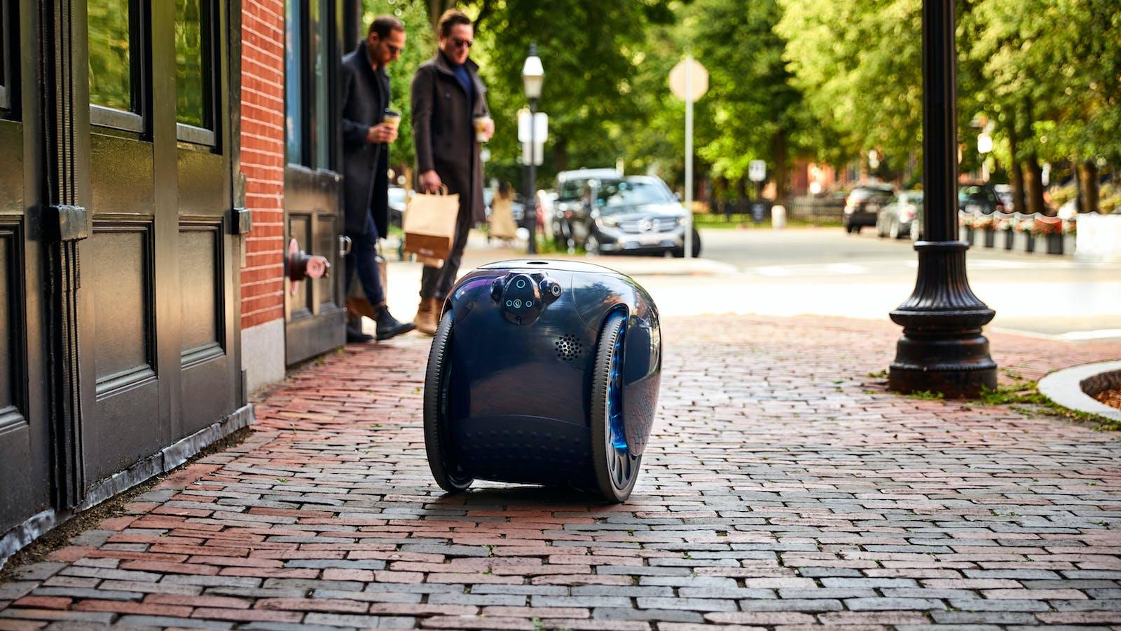 Gita Cargo-Carrying Robot